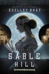 Deception on Sable Hill (Chicago World's Fair Mystery, #2)