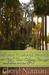 Return to Drake Springs by Cheryl Norman