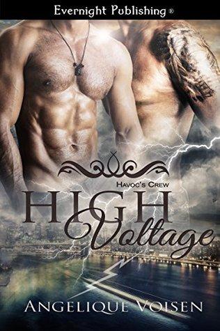 High Voltage (Havoc's Crew Book 2)