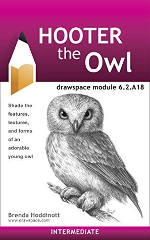 Hooter the Owl: drawspace module 6.2.A18