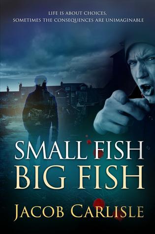 Ebook Small Fish Big Fish by P.J. McDermott read!
