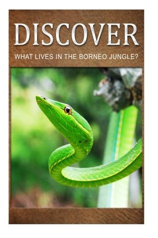 What Lives in the Borneo Jungle? - Discover: Early reader's wildlife photography book