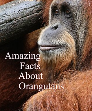 Amazing Facts About Orangutans: Picture Book For Babies Toddlers and First Readers (Baby Look Around Series 2)