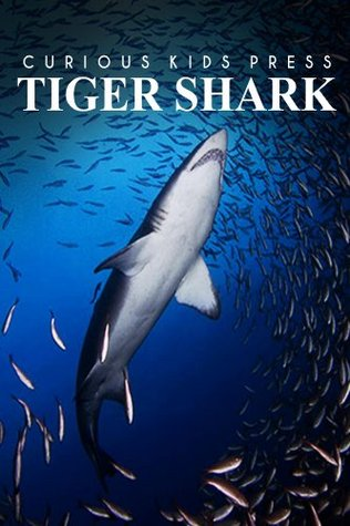 Tiger Shark - Curious Kids Press: Kids book about animals and wildlife, Children's books 4-6