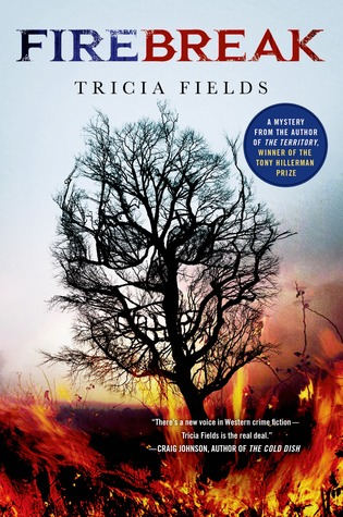 Firebreak (Josie Gray Mysteries, #4)