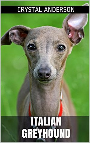 Italian Greyhound: How to Own, Train and Care for Your Italian Greyhound