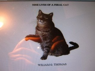 NINE LIVES OF A FERAL CAT/HUMAN CONTACT