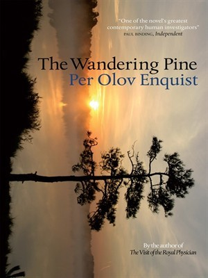 the-wandering-pine