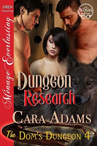 Dungeon Research (The Dom's Dungeon 4)