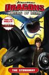 The Stowaway (Dragons: Riders of Berk Comics, #4)