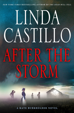 After the Storm (Kate Burkholder, #7)