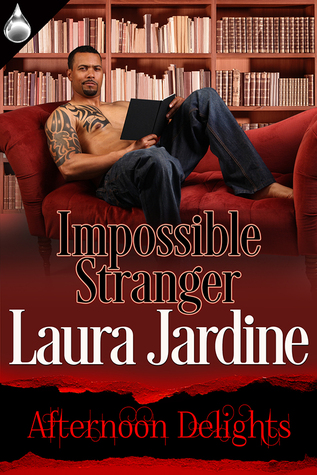 Impossible Stranger (Afternoon Delights Collection)