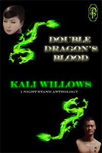 Double Dragon's Blood: Boxed Set