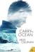 Carry the Ocean by Heidi Cullinan