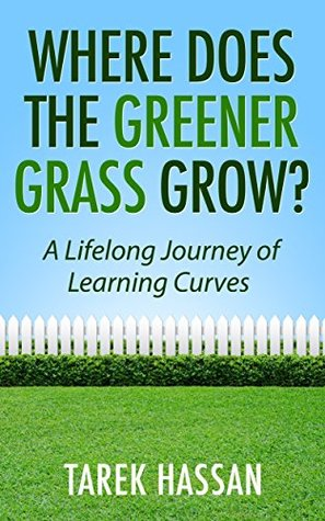Where Does the Greener Grass Grow?: A Lifelong Journey of Learning Curves