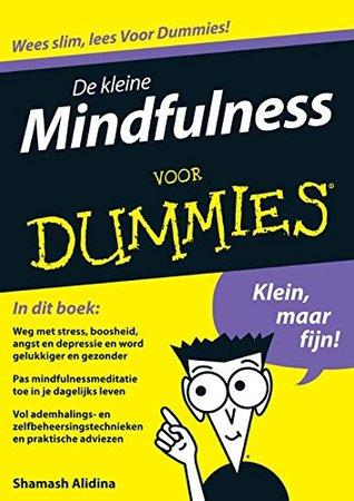 2 minute mini meditation dummies