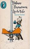 Professor Branestawm Up The Pole