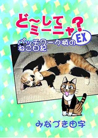 WhyMEENYA EX: Cat of the patchwork pattern