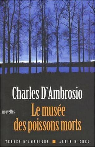 Le Musée Des Poissons Morts