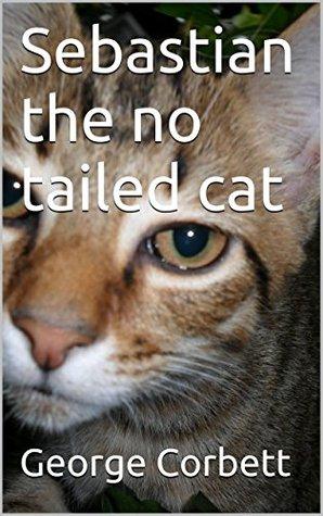 Sebastian the no tailed cat