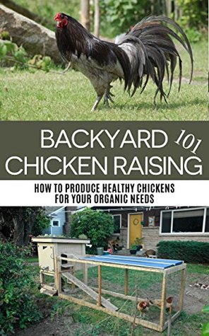 Backyard Chicken Raising 101: How to Produce Healthy Chickens for Your Organic Needs
