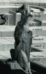 Thoughts from a naked unshackled mind