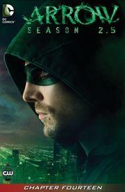 Arrow: Season 2.5 #14