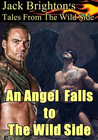 An Angel Falls to The Wild Side (Tales from the Wild Side)