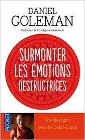 Surmonter Les Émotions Destructrices: Un Dialogue Avec Le Dalaï Lama