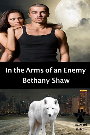 In the Arms of an Enemy by Bethany Shaw