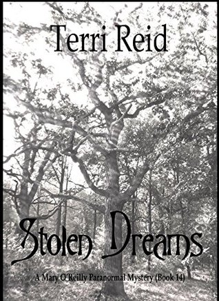 Stolen Dreams by Terri Reid