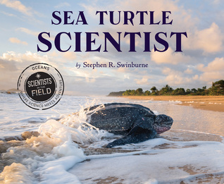 Ebook Sea Turtle Scientist by Stephen R. Swinburne read!
