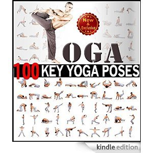 Yoga 100 Key Poses And Postures Picture Book For Beginners