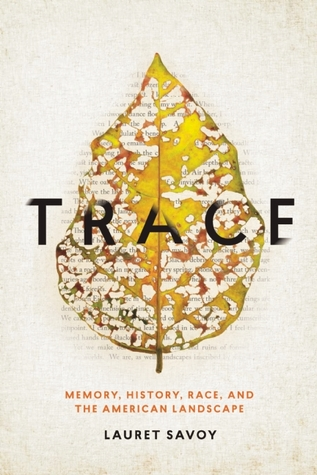 Trace: Memory, History, Race and the American Landscape