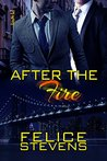 After the Fire by Felice Stevens