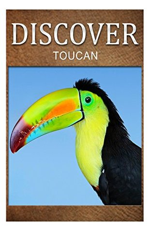 Toucan - Discover: Early reader's wildlife photography book