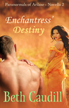 Enchantress' Destiny