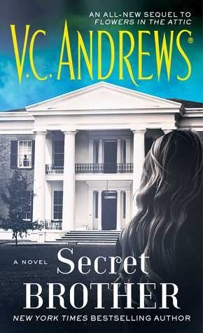 Secret Brother (Diaries, #3)