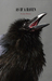 As If a Raven