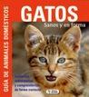 Gatos. Sanos y en forma by Beate Ralston
