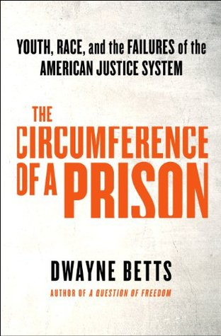 The Circumference of a Prison: Youth, Race, and the Failures of the American Justice System