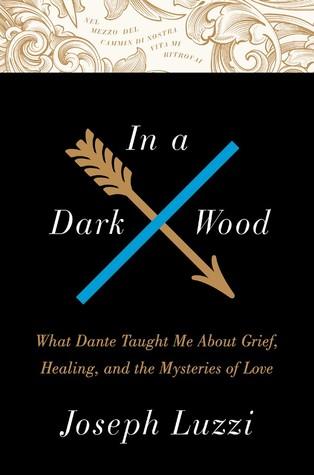 In a Dark Wood by Joseph Luzzi