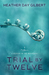 Trial by Twelve (A Murder in the Mountains, #2)