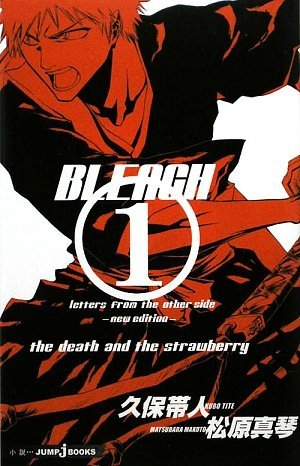 Bleach (Bleach Light Novels, #1)