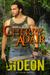 Gideon by Cherry Adair