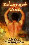 Inherent Risk