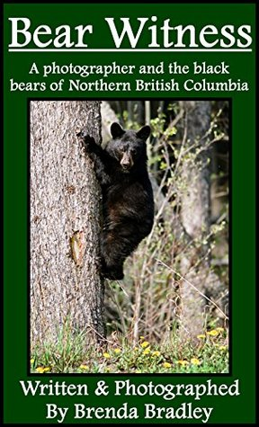 Bear Witness: A Photographer and the Black Bears of Northern British Columbia