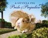 A Guinea Pig Pride & Prejudice by Alex Goodwin