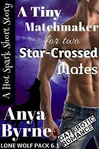 A Tiny Matchmaker for Two Star-Crossed Mates (Lone Wolf Pack, #6.1)