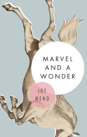 Marvel and a Wonder by Joe Meno